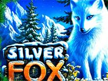 Silver Fox в Вулкане Платинум