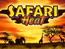 Safari Heat Вулкан Платинум